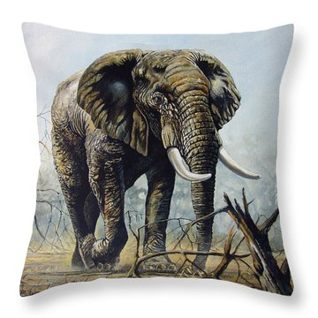 Walk About Throw Pillow by Anthony Mwangi