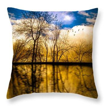 Walk Along The River Throw Pillow by Bob Orsillo