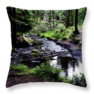 Walk By The Water Throw Pillow