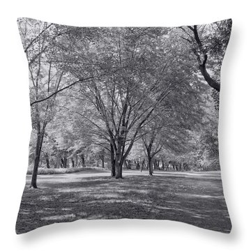 Walk In The Park Throw Pillow by Kim Hojnacki