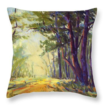 Walk In The Woods 5 Throw Pillow