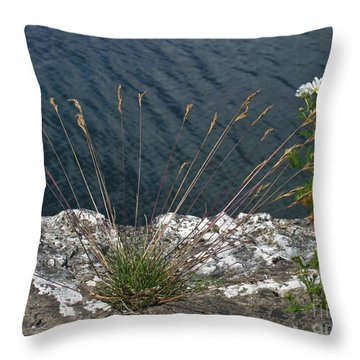 Throw Pillow featuring the photograph Flowers In Rock by Brenda Brown
