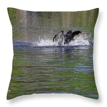 Walk On Water - The Anhinga Throw Pillow by Christine Till