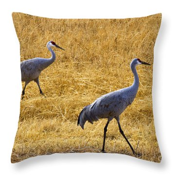 Walk This Way Throw Pillow by Mike Dawson