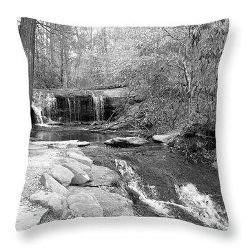 Walk To The Waterfall Throw Pillow by Carol Groenen
