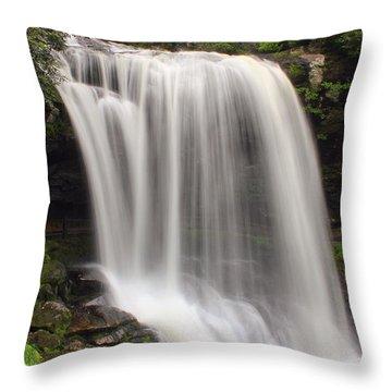 Walk Under A River Throw Pillow