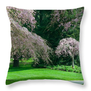 Throw Pillow featuring the photograph Walk Under The Cherry Blossoms by Sabine Edrissi