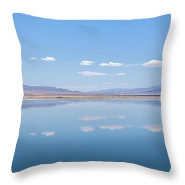 Walker Lake Mirror Throw Pillow