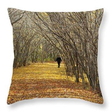 Walking A Golden Road Throw Pillow