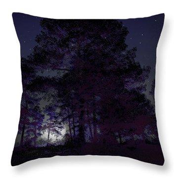 Walking At Night Throw Pillow by Nina Fosdick