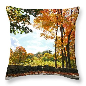 Throw Pillow featuring the photograph Walking Down Lyman Street by Rita Brown