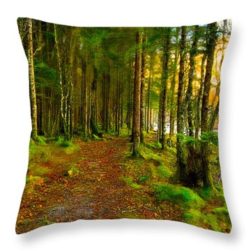 Throw Pillow featuring the photograph Walking In A Scottish Highland Wood by Mark E Tisdale