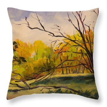Walking In Montgomery Bell Park. Throw Pillow by Janet Felts