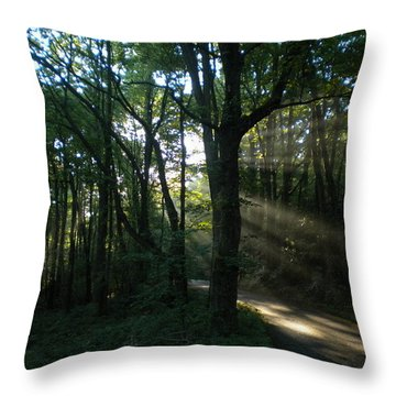 Walking In The Light Throw Pillow by Diannah Lynch