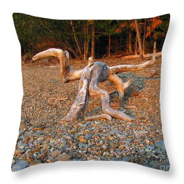 Walking On The Beach Throw Pillow