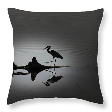 Walking On The Water Throw Pillow