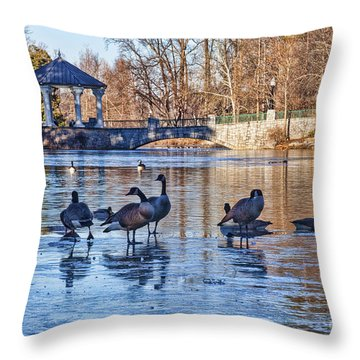 Walking On Thin Ice Throw Pillow