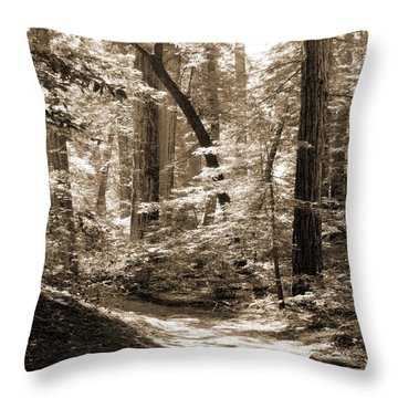 Walking Through The Redwoods Throw Pillow by Mike McGlothlen