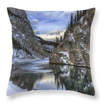 Walking Through Wonderland Throw Pillow