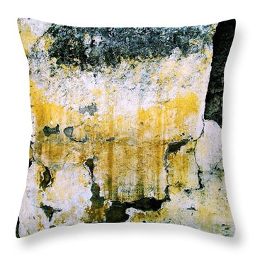 Throw Pillow featuring the digital art Wall Abstract 30 by Maria Huntley
