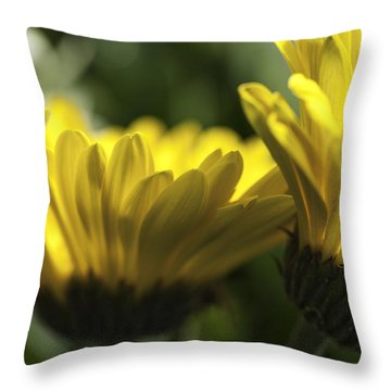 Wall Flowers Throw Pillow by Fran Riley
