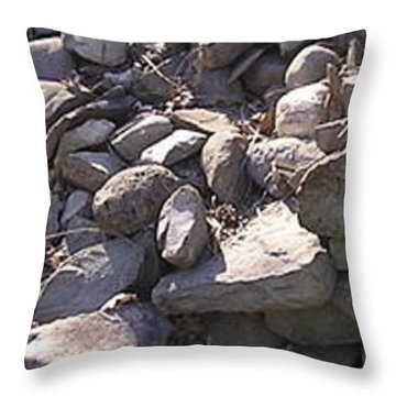 Throw Pillow featuring the photograph Wall II by R  Allen Swezey