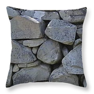 Throw Pillow featuring the photograph Wall by R  Allen Swezey