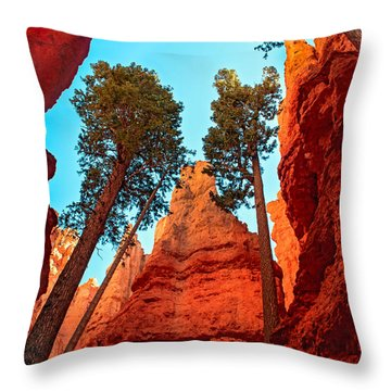 Wall Street Throw Pillow by Robert Bales