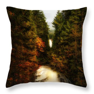 Wallace Fall North Fork Throw Pillow by James Heckt