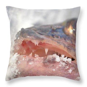 Walleye Teeth Throw Pillow