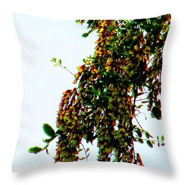 Walnut Blooms Throw Pillow by Tina M Wenger