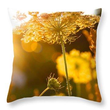 Warmth Of The Sun Throw Pillow