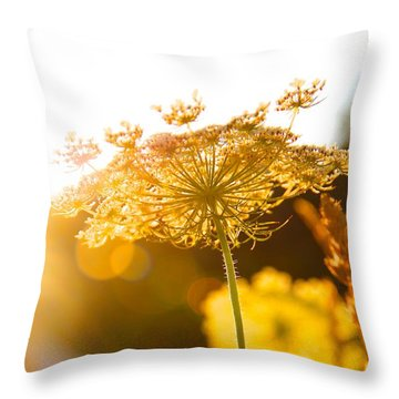 Warmth Of The Sun Throw Pillow