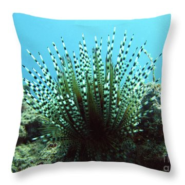 Wana Throw Pillow by Suzette Kallen