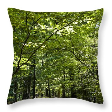 Wander Like A Drifter Throw Pillow