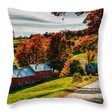 Wandering Down The Road Throw Pillow by Jeff Folger