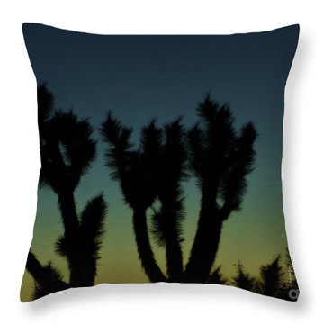 Waning Throw Pillow by Angela J Wright