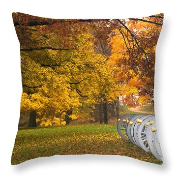 War And Peace Throw Pillow by Paul W Faust -  Impressions of Light