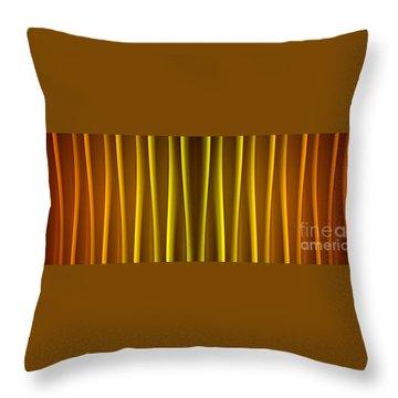 Warm Curtain Throw Pillow