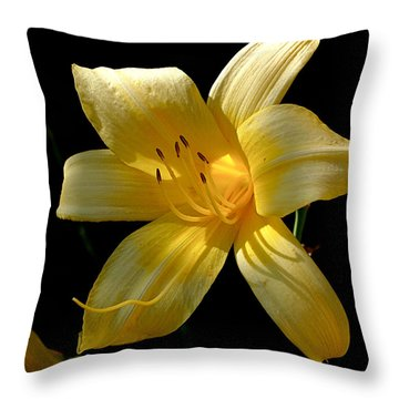 Warm Glow Throw Pillow by Rona Black