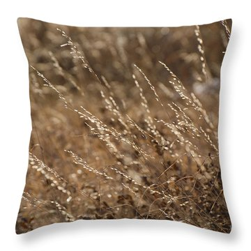 Warm Light On A Winter's Day Throw Pillow