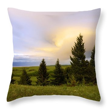Warm The Soul Throw Pillow