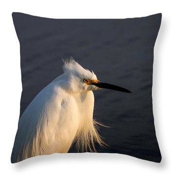 Warming Sunrays Throw Pillow