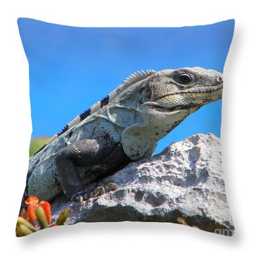 Warming Up Throw Pillow