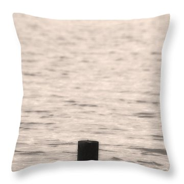 Warning Midwest Floods Throw Pillow