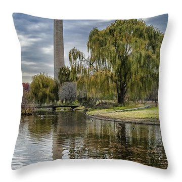 Washington Reflection Throw Pillow