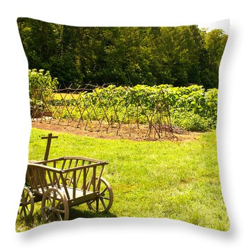 George Washington's Garden Throw Pillow
