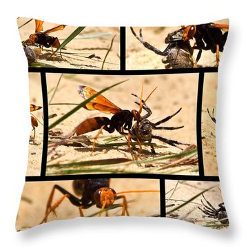 Throw Pillow featuring the photograph Wasp And His Kill by Miroslava Jurcik