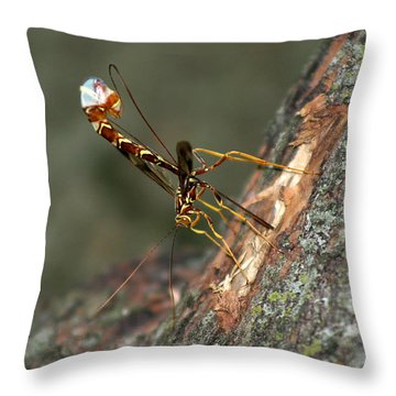 Wasphornet Throw Pillow by Mark Russell