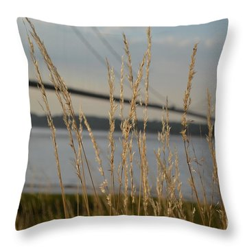 Wasting Time By The Humber Throw Pillow by Scott Lyons